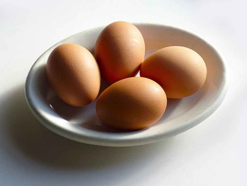 eggs slow carb protein